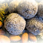 Wisdom Orbs *raw vegan,all organic,gluten free and sugar free*